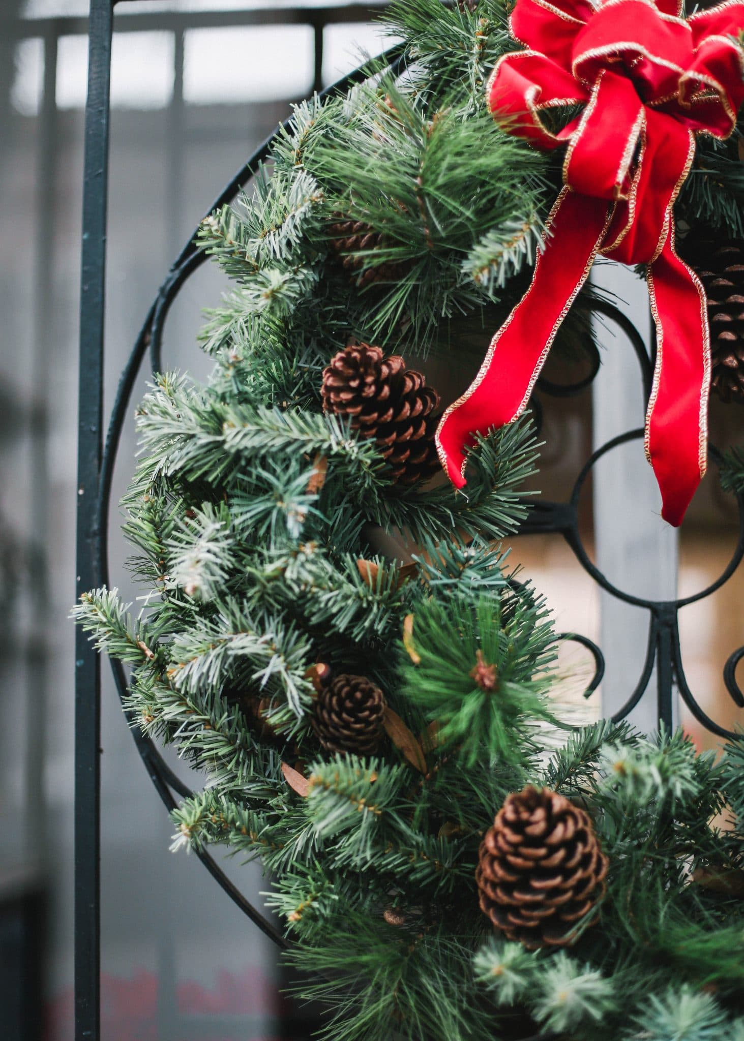 downtown charleston holiday winter decorations, pretty in the pines, travel blog, lifestyle