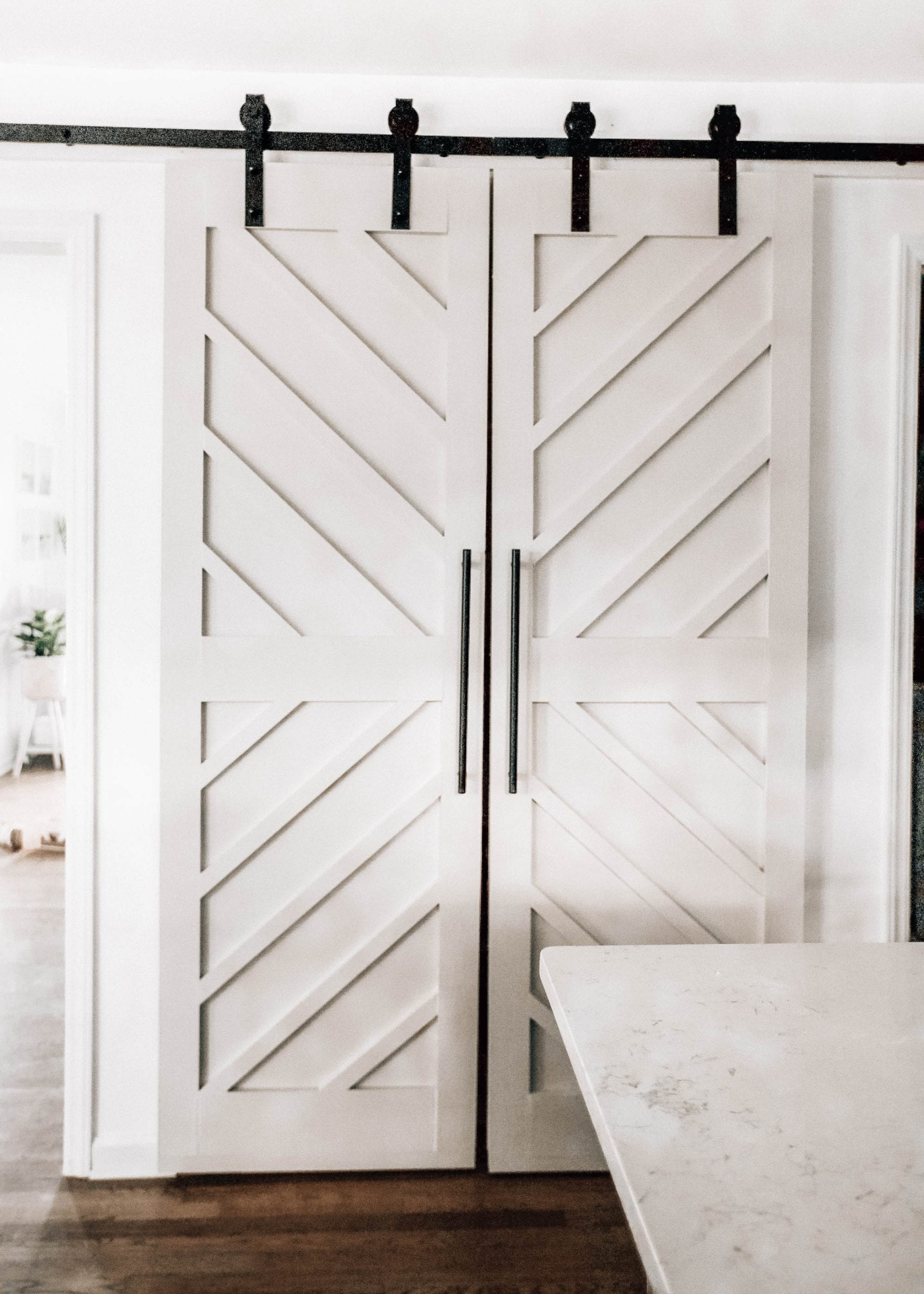 DIY pantry barn doors modern